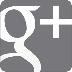 google plus grey vector logo copy